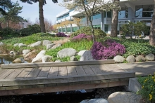 Earth-Enterprises-Landscaping-016