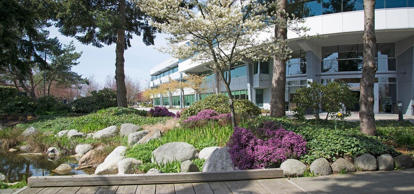 Earth Enterprise Commercial Landscaping in Vancouver