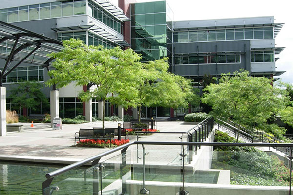 Commercial-Landscaping-04